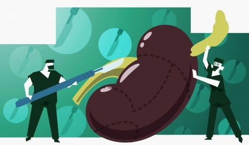 补肾养肾,玉强龙给大家讲解下怎样养生